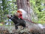 Hakon mit Elch / der Aufseher der Tiere 12cm