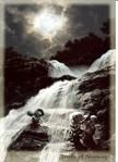 Postkarte NyForm 1997